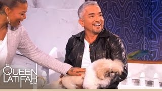 "Cesar Millan Plays ""Who's Your Doggie?"" with Queen Latifah"