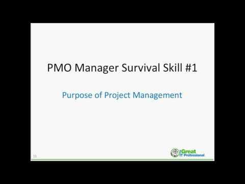 Pmo Survival Skills