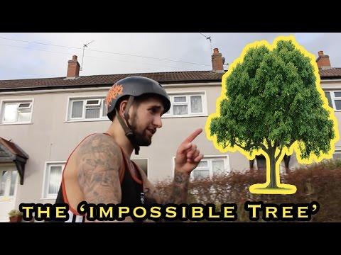 FLAIRING A TREE ON A BIKE?