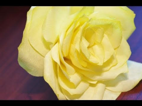 Watercolor Coffee Filter Paper Roses Instructional TutorialYouTube