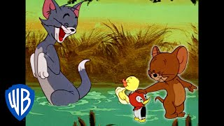 Tom & Jerry in italiano | È di famiglia | WB Kids