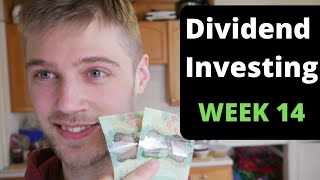 Dividend Investing Case Study: $1,312 - $100,000 (WEEK 14) With Wealthsimple Trade Dividend Stocks