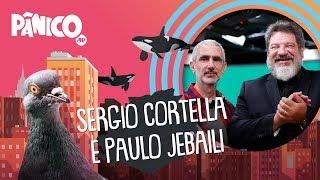 Mario Sergio Cortella e Paulo Jebaili | PÂNICO - 03/02/2020 - AO VIVO