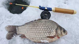 Чуть не Утащил удочку Ловля Крупного Карася Рыбалка зимой 2021