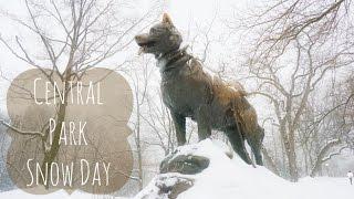 Central Park Snow Day | Visiting Balto