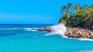 Olas Relajantes de una Isla Tropical en tu Hogar Ahora -Teletransportarte!