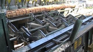 Кряжевка и сортировка бревна HOLTEC . Video  2