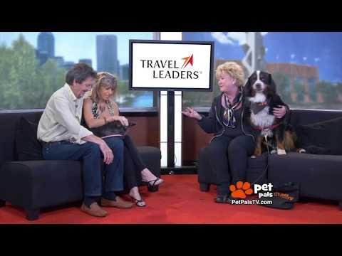 Galapagos- Ann & John's Animal Travel Adventures