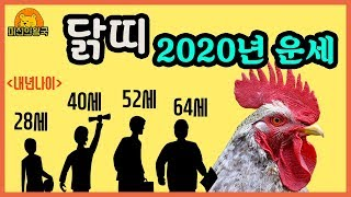 2020년 신년운세 닭띠 편 , 과연 내년 닭띠의 운세는?