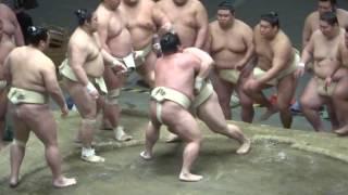 20170503 大相撲夏場所 稽古総見 嘉風vs宇良など.