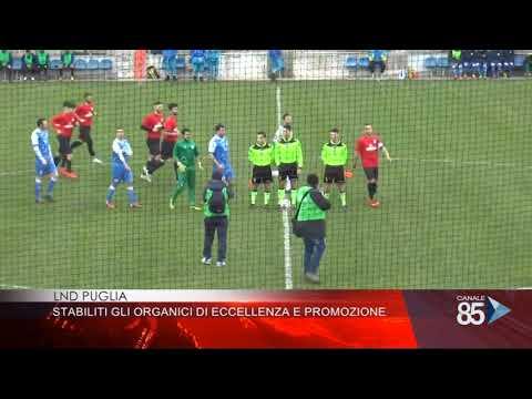 Calendario Eccellenza Pugliese.Home Lega Nazionale Dilettanti Cr Puglia