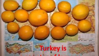 Турция - Страна Лимония в 2016 году! Turkey is Country of Lemons! Welcome to Turkiye!(VIDEO LINK = https://youtu.be/yVFEdWbUImU What do you know about Turkey? Turkey is Country of Lemons! Welcome to Turkiye! Turkey is a country of ..., 2016-02-29T11:53:48.000Z)