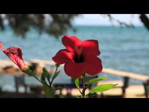 Hotel Votsala auf Lesbos - vamos Reisen