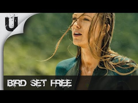 Sia - Bird Set Free [The Shallows]