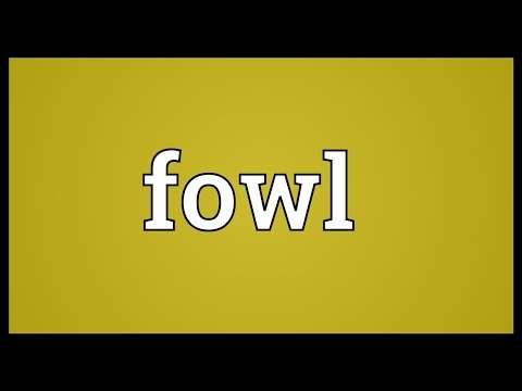Fowl Meaning