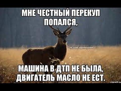 Даруна - убийца вирусов. Perfect Organics профессор Суботялов М  А  Самара, 09 04 2016