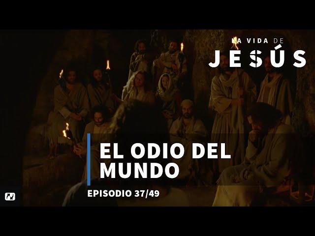 El odio del mundo | La vida de Jesús | Español | 37/49
