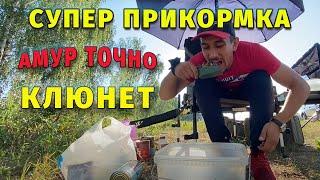 Рыбалка на АМУРА И КАРПА с напарником в Башкирии Подготовка к соревнованиям по карпфишингу