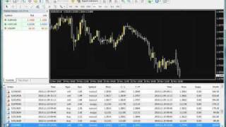 PIPs 4 Idiots Review - Forex Trading with Joe Simpson - LIVE PROOF - Video 1 Of 4