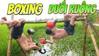 TXT TV | Trận Chiến Boxing Siêu Hài Hước Đu Đưa Trên Cây | Xem Không Thể Nhịn Cười Được