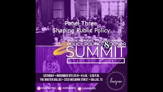 2nd Annual Policy, Politics & Donor Summit - Panel Three - Shaping Public Policy
