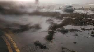 Ophelia hurricane galway