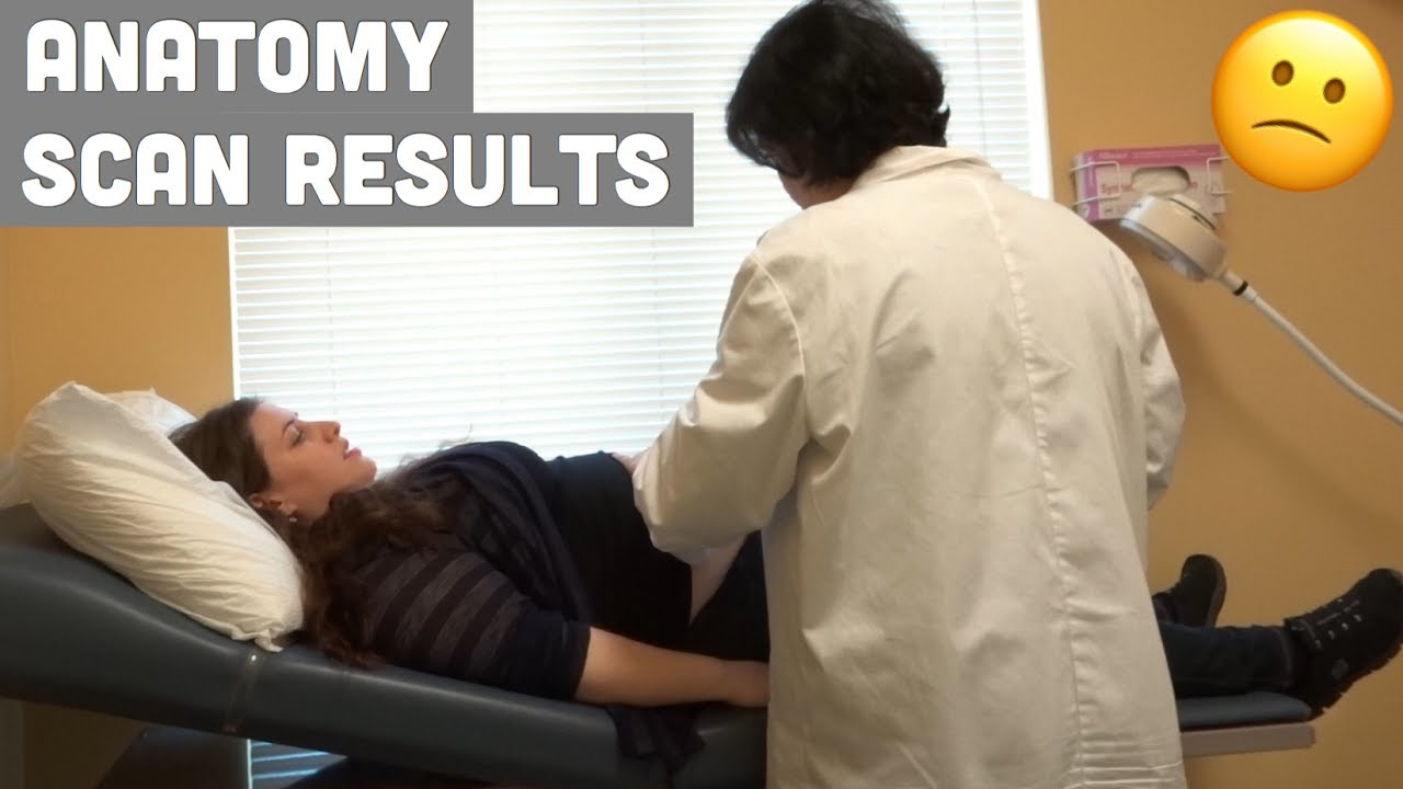 DOCTOR\'S APPOINTMENT - Anatomy Scan Results - YouTube