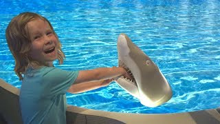 Kids Visiting Aquarium with Sharks, Turtles and Fish   Learn Sea Animals with BRO BRO
