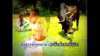 Repeat youtube video น้ำตาวัวชน เงินล้าน - ฐา พงศธร
