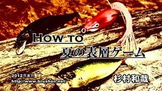 How to 夏の表層ゲーム/杉村和哉・琵琶湖 thumbnail