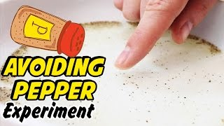 Avoiding Pepper | Science Experiment For Kids!!
