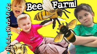BEE FarmTrain Ride! Real Bees + Honey Tasting, Playground by HobbyKidsVids