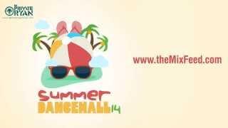 Dj Private Ryan   Summer Dancehall 2014 [DANCEHALL REGGAE MIX DOWNLOAD]