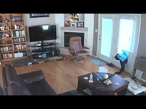 Man breaks into Albuquerque home through doggie door