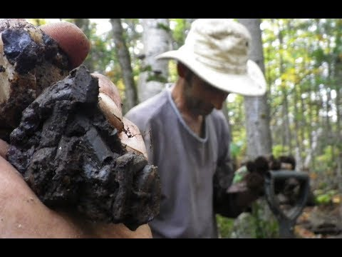 Digging an Incredible Crystal Vein in  Tory Hill, Ontario (Rocks and Minerals)