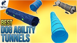 9 Best Dog Agility Tunnels 2018