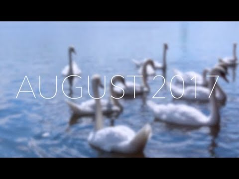Document Your Life - August 2017