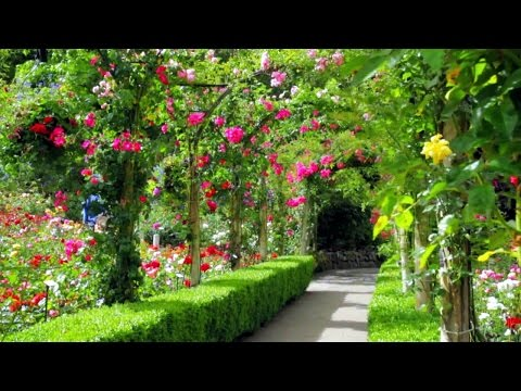 Most beautiful garden. Canada.