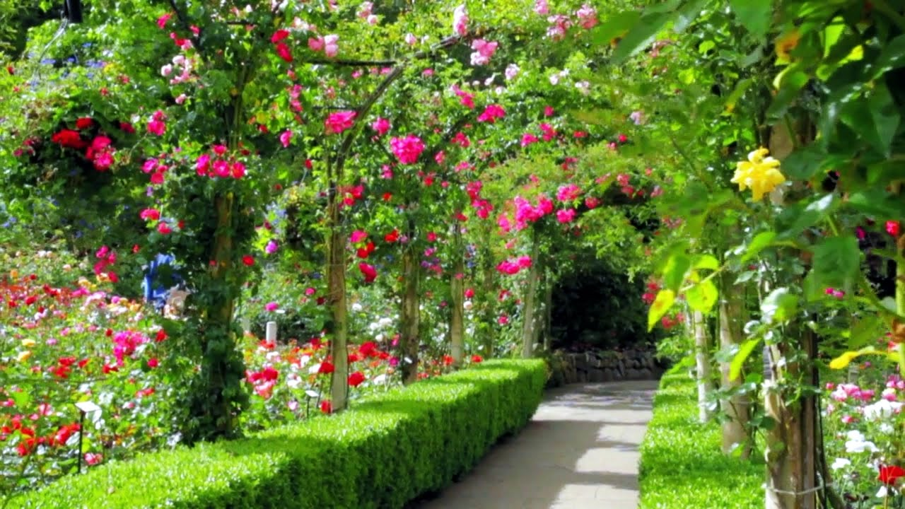 Amazing Most Beautiful Garden. Canada.   YouTube Part 7