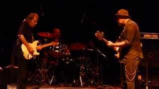 Walter Trout - Catfish Blues - 8/1/15 Riverfront Blues Fest - Wilmington, De