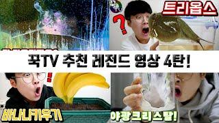 꾹TV가 추천하는 레전드 영상 모음 4탄!! (키우기시리즈)[ 꾹TV ]