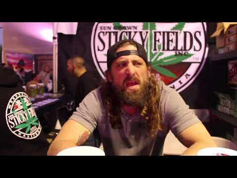 The Emerald Cup 2017 (sticky fields interview)