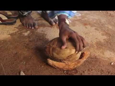 Coconut skin out process for village style / VILLAGE FOOD FACTORY