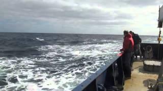 UW|360: Measuring Ocean Waves