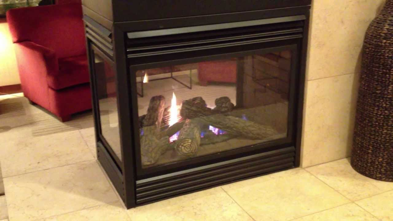 Napoleon See Thru Gas Fireplace Three Sided Peninsula Burn