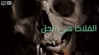 مصر العربية | مخدر الفلاكا..لو عايز تبقى زومبي؟