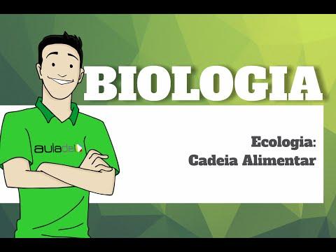 biologia---ecologia:-cadeia-alimentar