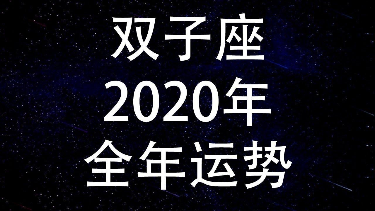 2020 年 双子座