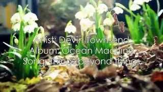 Devin Townsend - Things beyond things [Lyrics + Sub Esp]