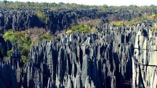 【World Heritage】Madagascar Island ~Tsingy~ | 世界遺産:マダガスカル島 ツインギ